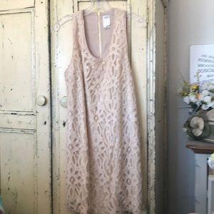 Ali Ro Sz 6 Dusty Pink Lace & Sequins Mini Dress